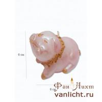 Свинка Свеча СД-589